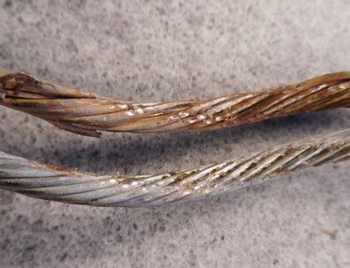 Schmiermittel im Seil – bewirkt mehr als man denkt