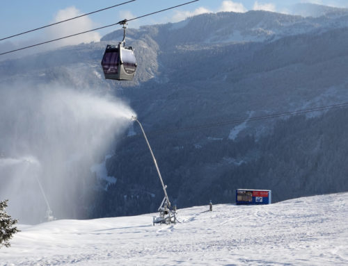 Bächler – der Schneilanzenspezialist